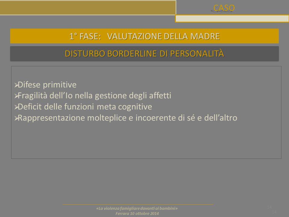 CASO 14 «La violenza famigliare davanti ai bambini» Ferrara 10 ottobre 2014 DISTURBO BORDERLINE DI PERSONALITÀ 14  Difese primitive  Fragilità dell'