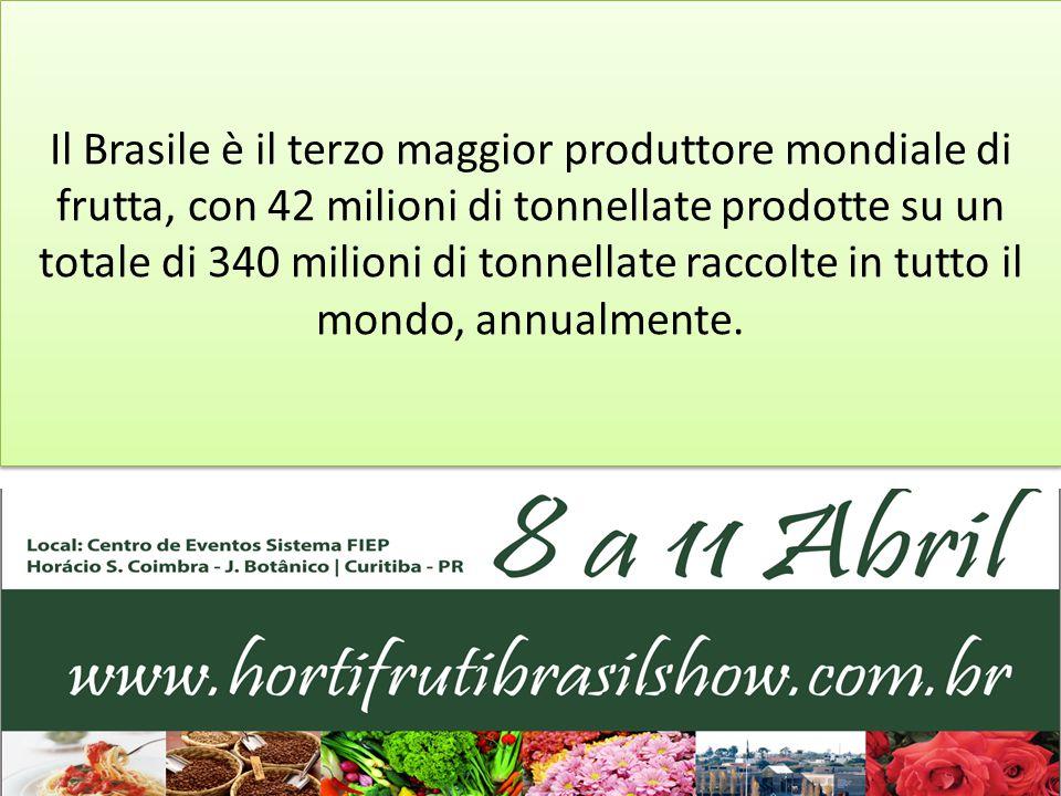 Il Brasile è il terzo maggior produttore mondiale di frutta, con 42 milioni di tonnellate prodotte su un totale di 340 milioni di tonnellate raccolte