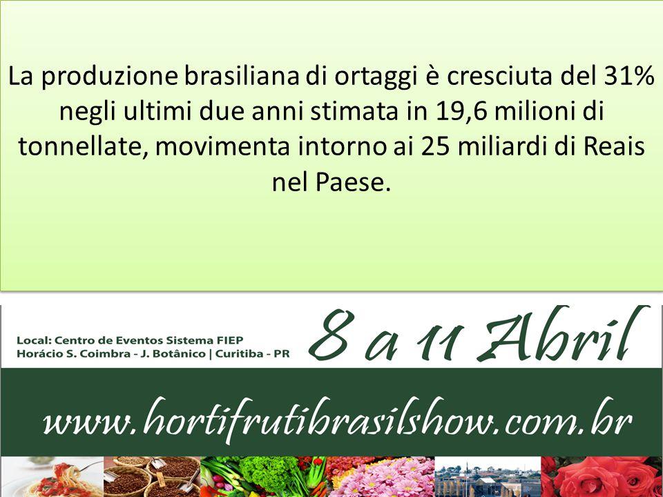 La produzione brasiliana di ortaggi è cresciuta del 31% negli ultimi due anni stimata in 19,6 milioni di tonnellate, movimenta intorno ai 25 miliardi