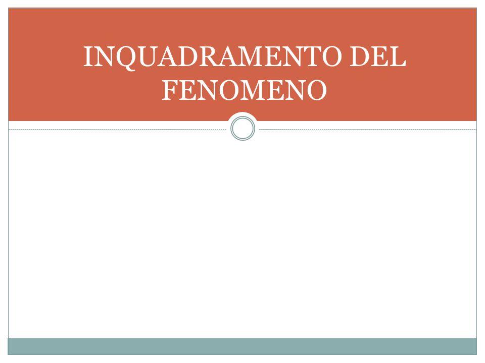 INQUADRAMENTO DEL FENOMENO