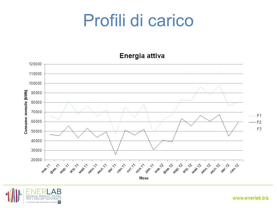 www.enerlab.biz Profili di carico
