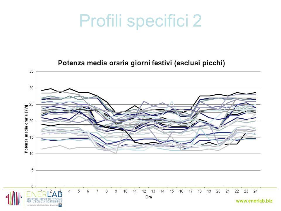 www.enerlab.biz Profili specifici 2