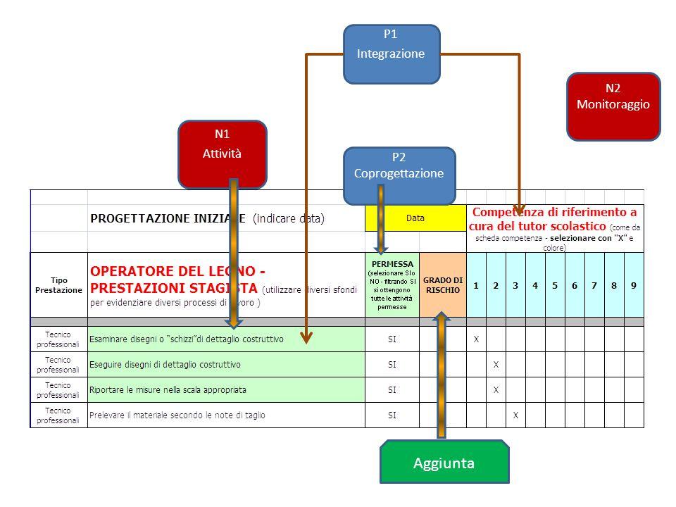 Aggiunta P1 Integrazione P2 Coprogettazione N1 Attività N2 Monitoraggio