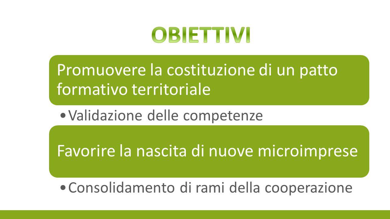 Promuovere la costituzione di un patto formativo territoriale Validazione delle competenze Favorire la nascita di nuove microimprese Consolidamento di