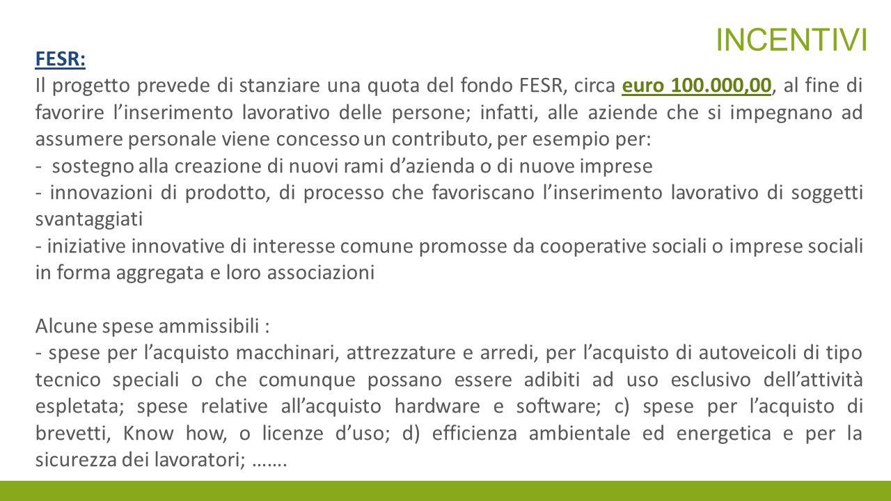 INCENTIVI FESR: Il progetto prevede di stanziare una quota del fondo FESR, circa euro 100.000,00, al fine di favorire l'inserimento lavorativo delle p