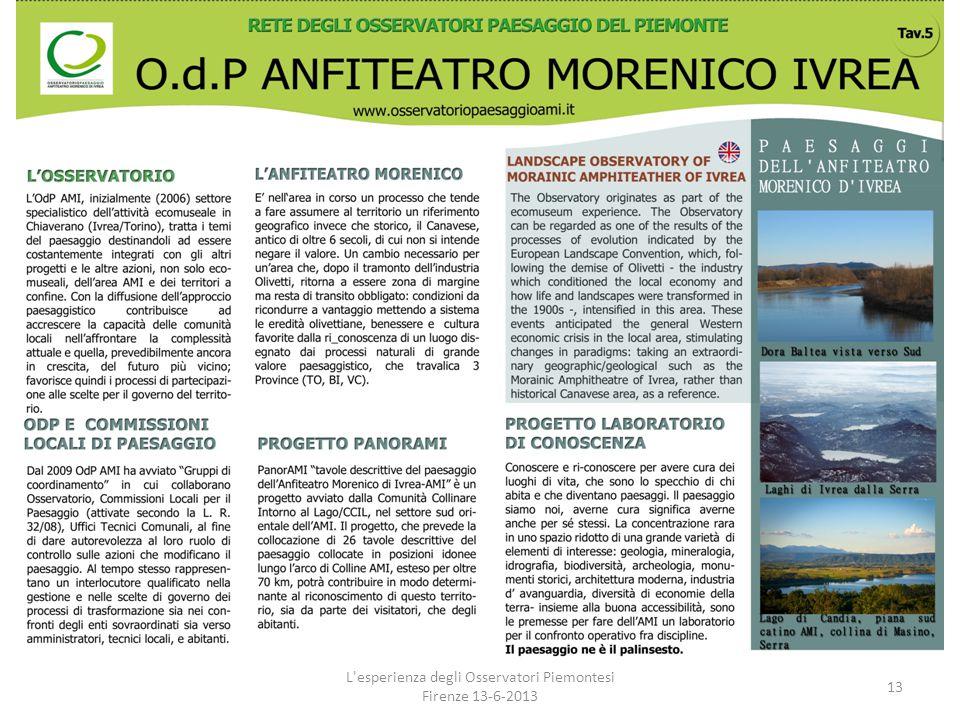 L'esperienza degli Osservatori Piemontesi Firenze 13-6-2013 13