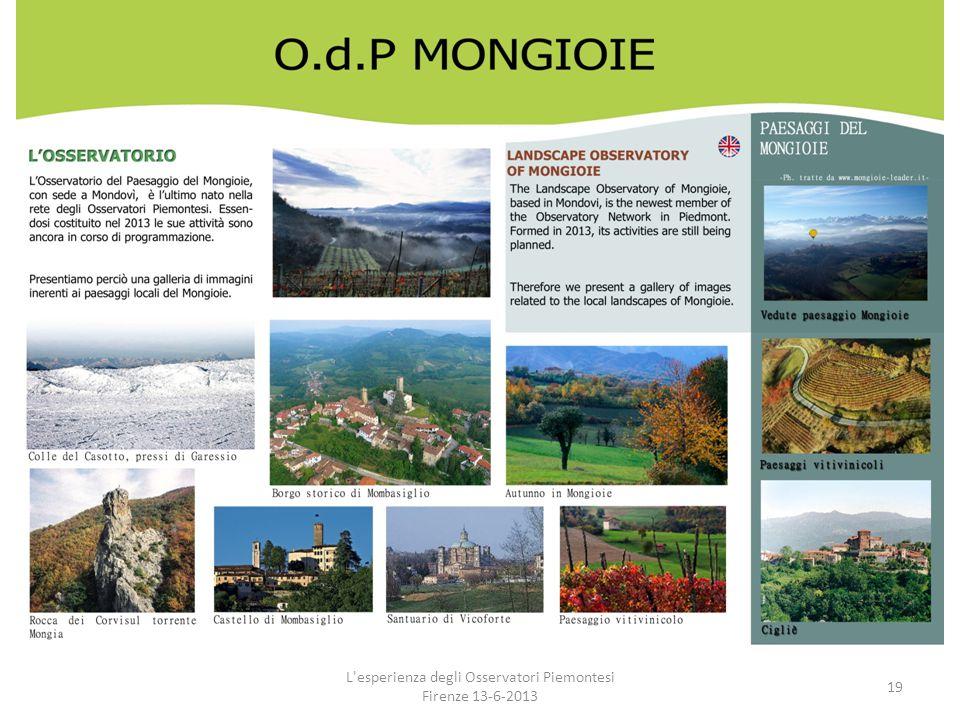 L'esperienza degli Osservatori Piemontesi Firenze 13-6-2013 19