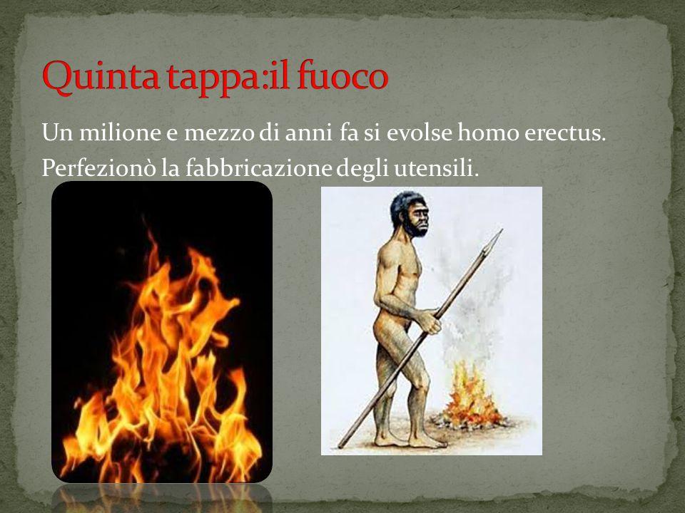 Tra i 200 000 anni fa e i 150 000 homo sapiens
