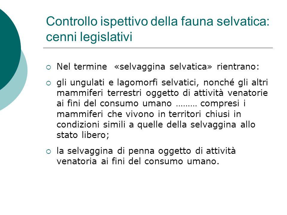 Controllo ispettivo della fauna selvatica: cenni legislativi  Nel termine «selvaggina selvatica» rientrano:  gli ungulati e lagomorfi selvatici, non