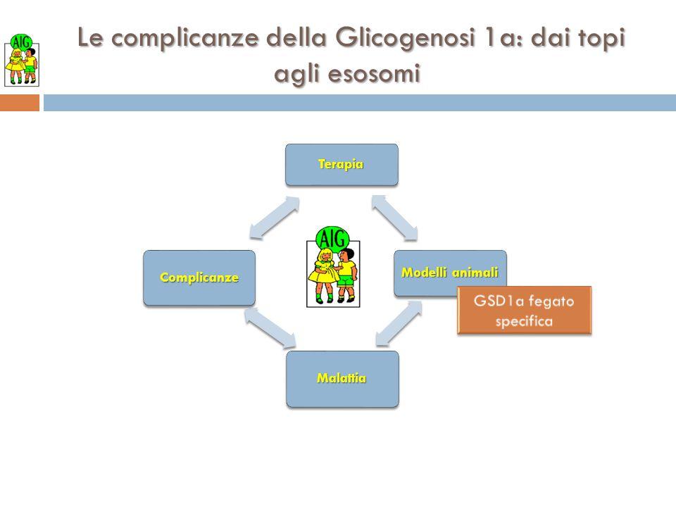 Le complicanze della Glicogenosi 1a: dai topi agli esosomi Le complicanze della Glicogenosi 1a: dai topi agli esosomi Terapia Modelli animali Malattia