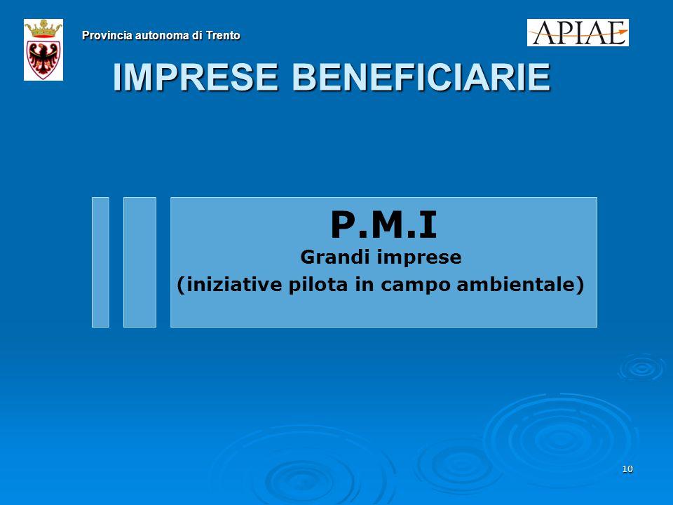 10 IMPRESE BENEFICIARIE P.M.I Grandi imprese (iniziative pilota in campo ambientale) Provincia autonoma di Trento