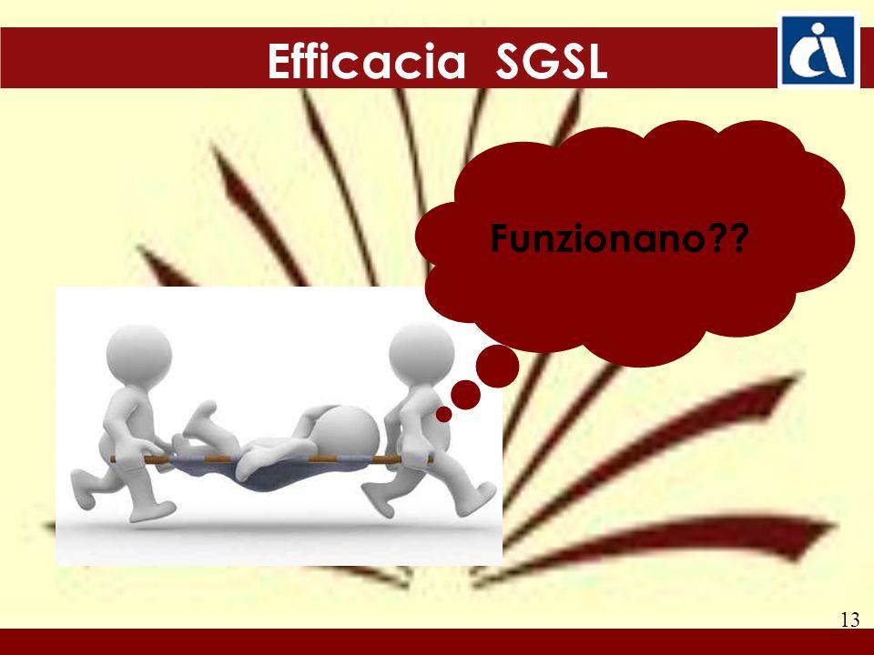 13 Efficacia SGSL Funzionano