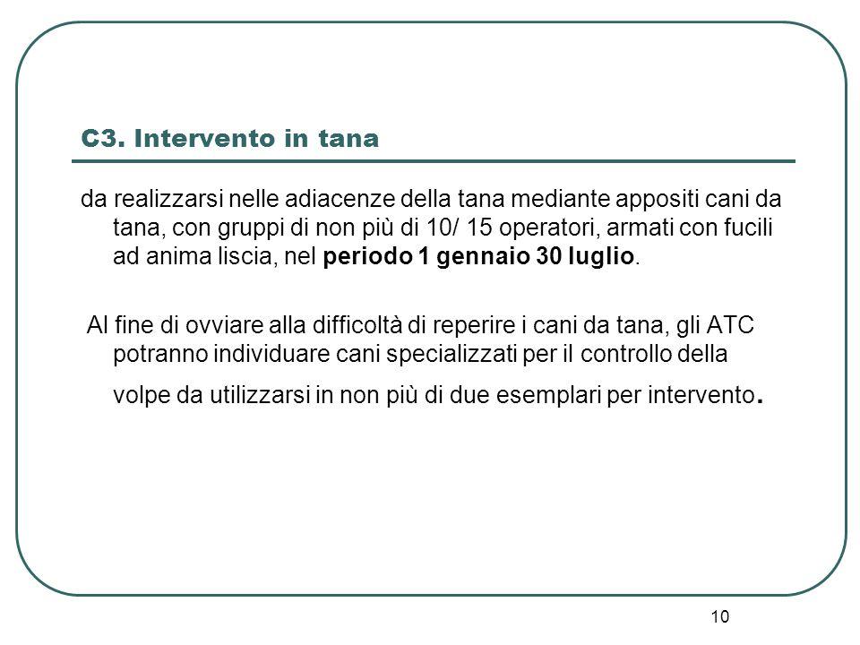 10 C3. Intervento in tana da realizzarsi nelle adiacenze della tana mediante appositi cani da tana, con gruppi di non più di 10/ 15 operatori, armati