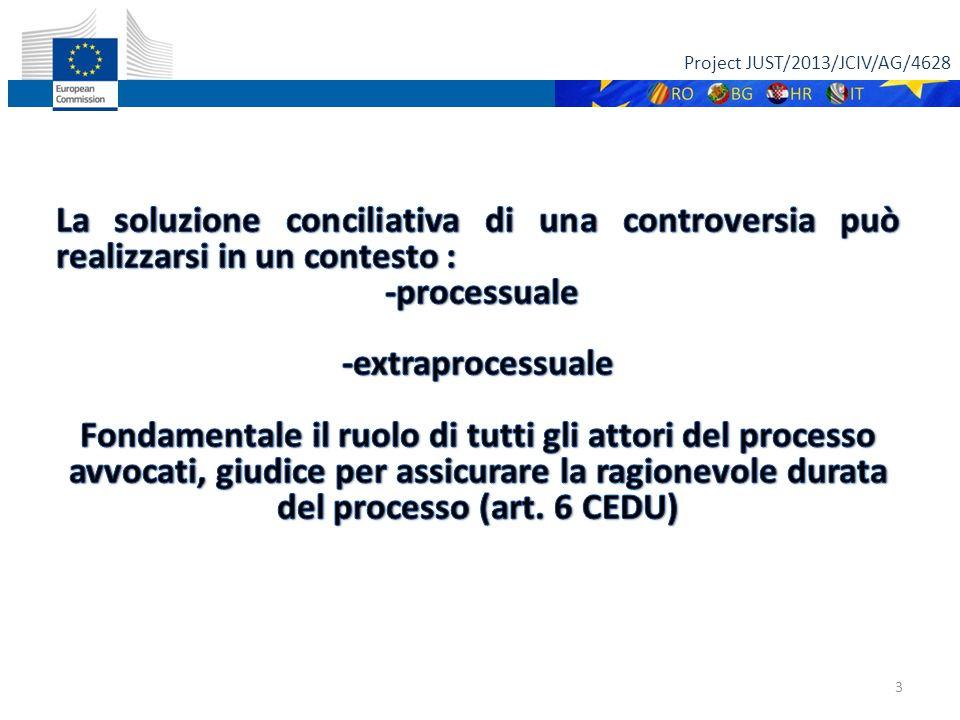 Project JUST/2013/JCIV/AG/4628 14 Come è stato recepito l'art.