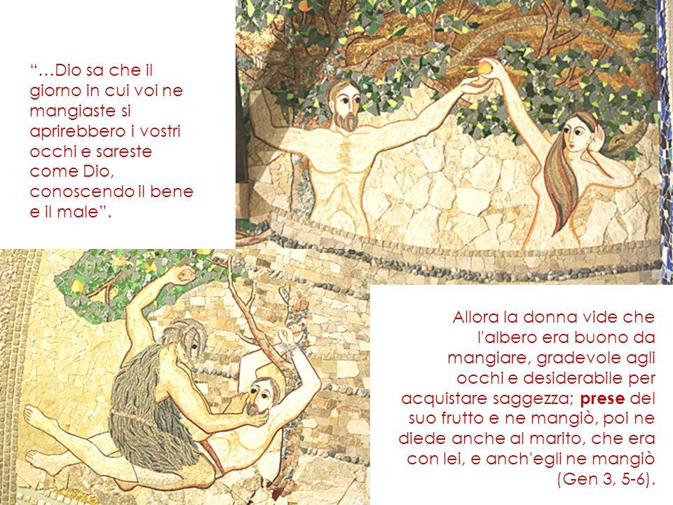 Allora la donna vide che l'albero era buono da mangiare, gradevole agli occhi e desiderabile per acquistare saggezza; prese del suo frutto e ne mangiò