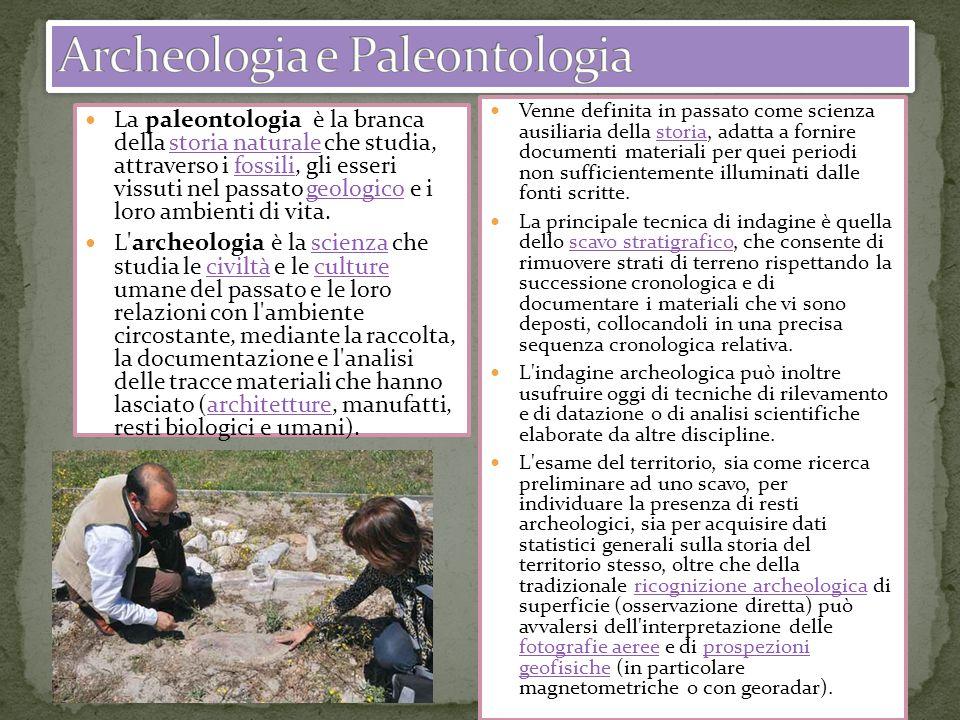 La paleontologia è la branca della storia naturale che studia, attraverso i fossili, gli esseri vissuti nel passato geologico e i loro ambienti di vit