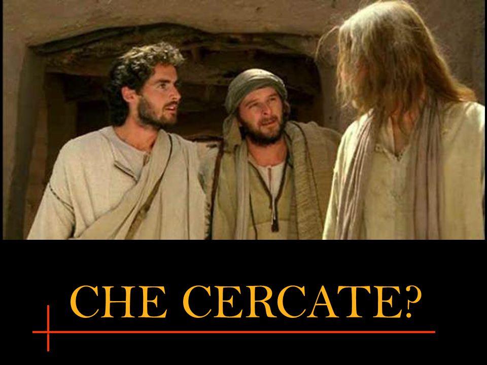 CHE CERCATE?