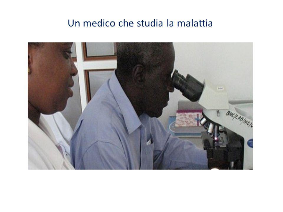 Un medico che studia la malattia
