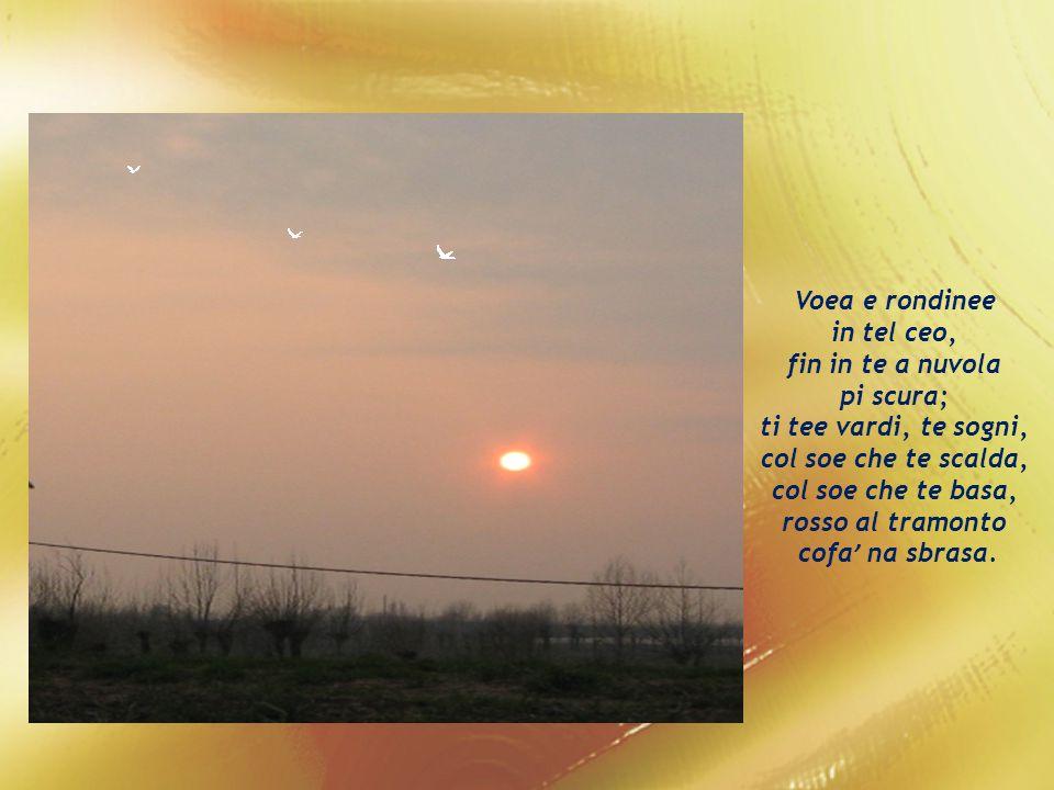 Tera veneta mia, ndoe che so nato, ndoe che e raixe se impianta; tera ….beissima tera, tera che canta par mi.