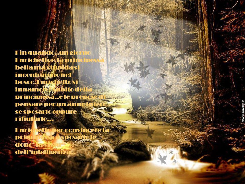 Fin quando..un giorno Enrichetto e la principessa bella ma stupida si incontrarono nel bosco.Enrichetto si innamoro' subito della principessa..e le pr