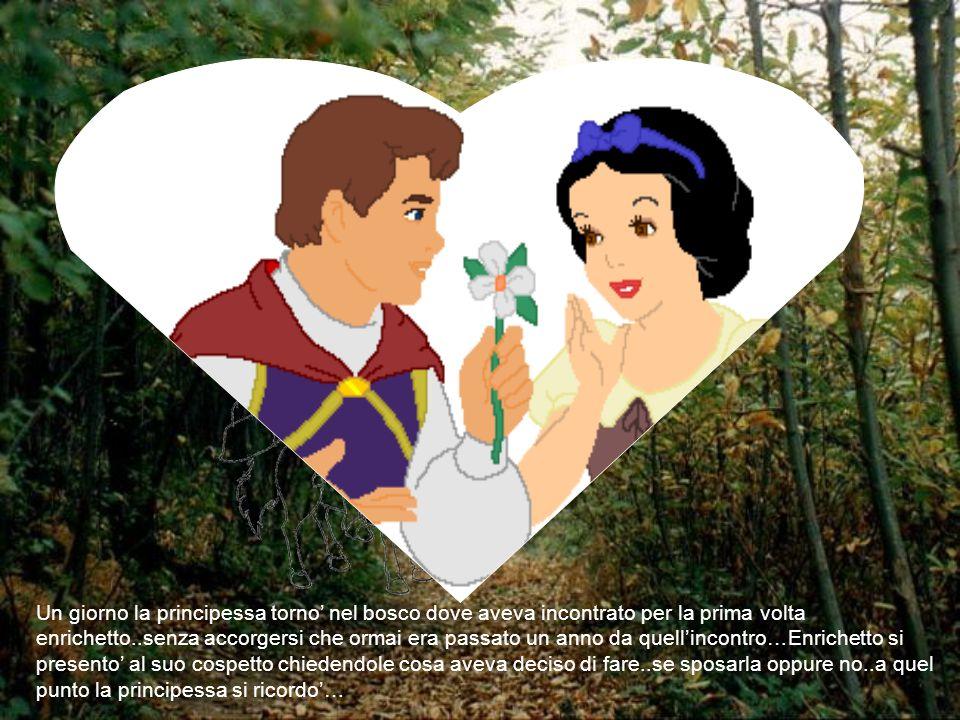 Un giorno la principessa torno' nel bosco dove aveva incontrato per la prima volta enrichetto..senza accorgersi che ormai era passato un anno da quell
