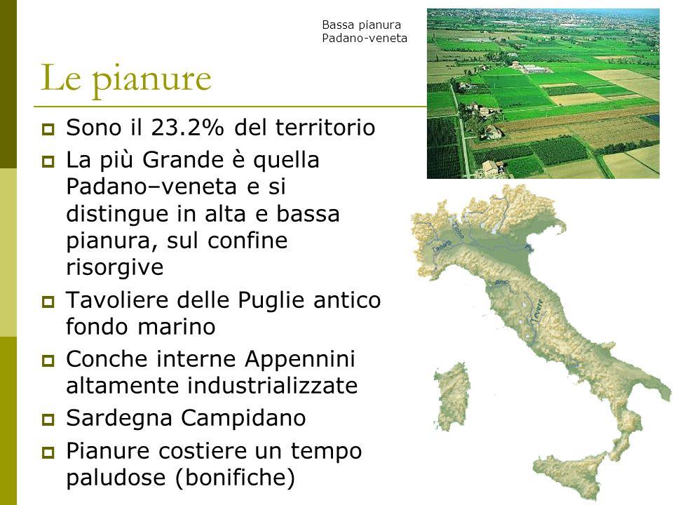 Le pianure  Sono il 23.2% del territorio  La più Grande è quella Padano–veneta e si distingue in alta e bassa pianura, sul confine risorgive  Tavol