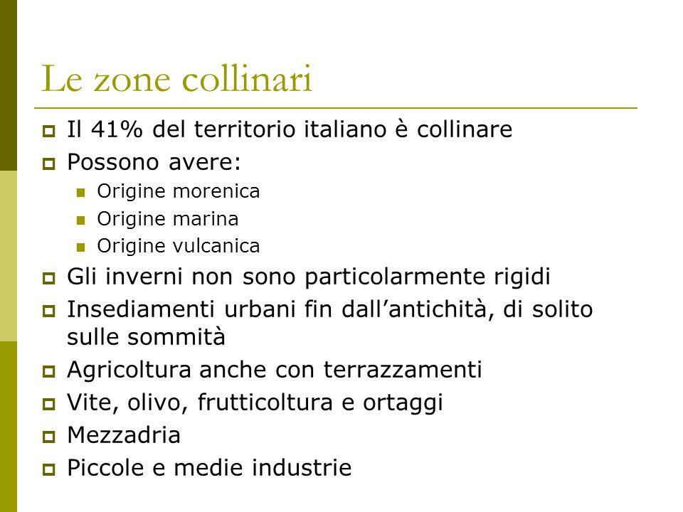 Le zone collinari  Il 41% del territorio italiano è collinare  Possono avere: Origine morenica Origine marina Origine vulcanica  Gli inverni non so
