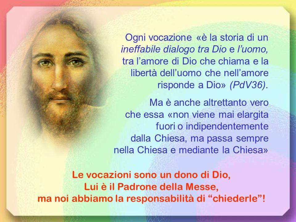 «Dalla Trinità, impariamo tre note della sinfonia divina dell'amore: gratuità, gratitudine, comunione.