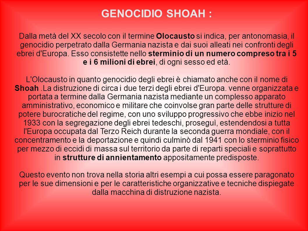 Dalla metà del XX secolo con il termine Olocausto si indica, per antonomasia, il genocidio perpetrato dalla Germania nazista e dai suoi alleati nei co