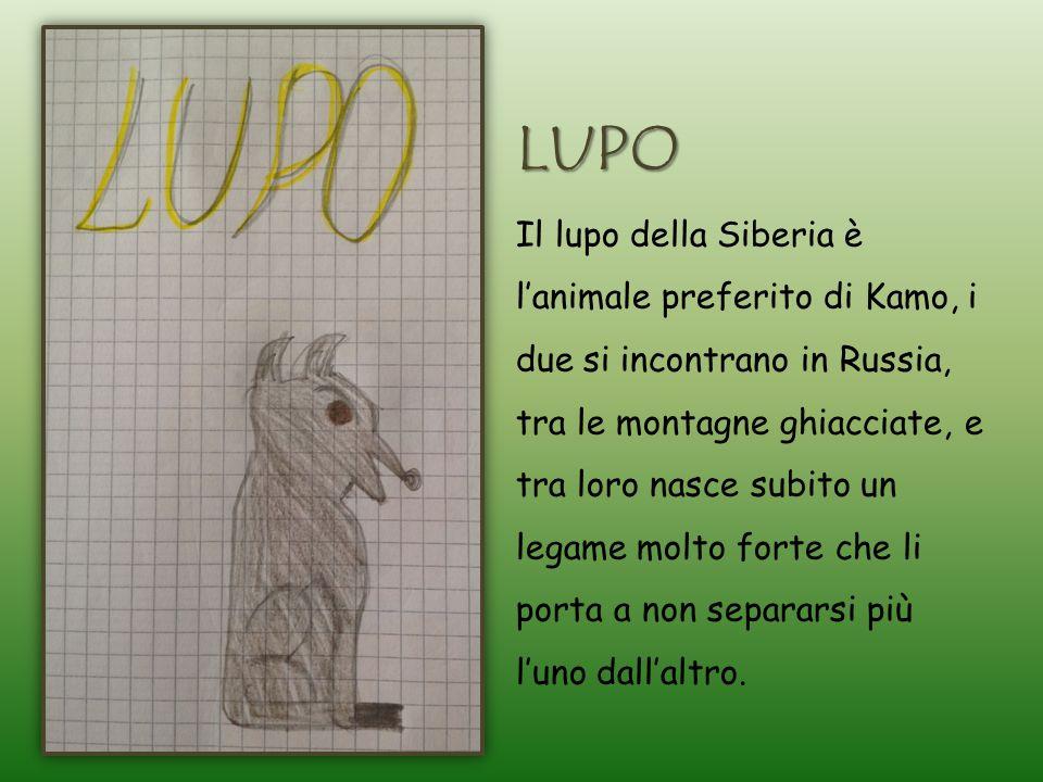 LUPO Il lupo della Siberia è l'animale preferito di Kamo, i due si incontrano in Russia, tra le montagne ghiacciate, e tra loro nasce subito un legame molto forte che li porta a non separarsi più l'uno dall'altro.