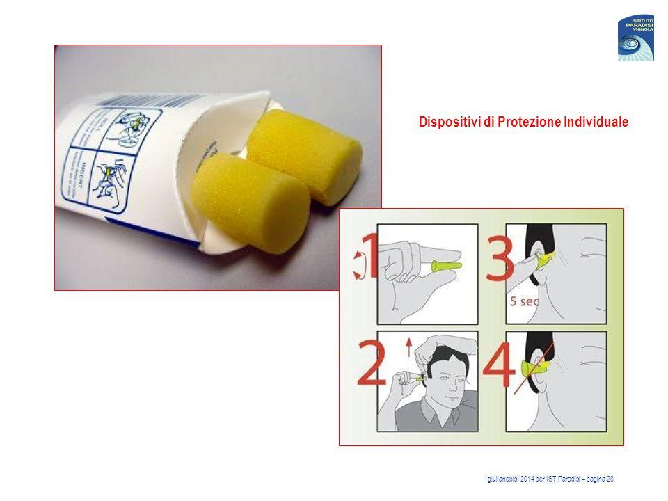 Dispositivi di Protezione Individuale giulianobisi 2014 per IST Paradisi – pagina 28