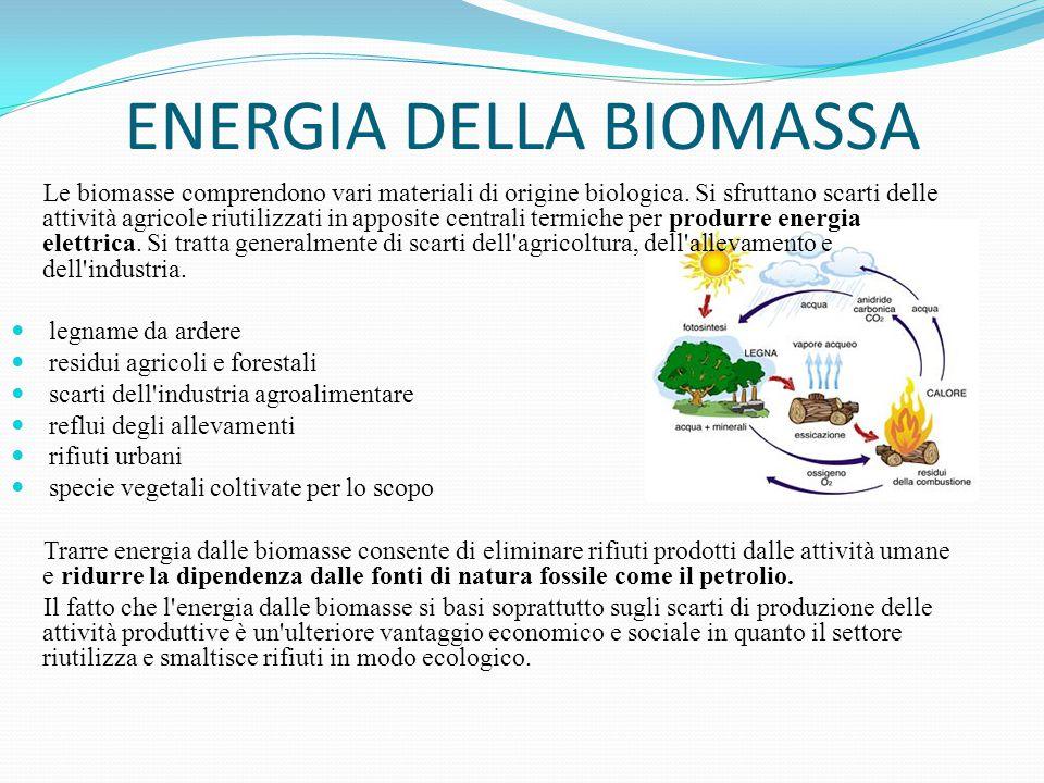 ENERGIA DELLA BIOMASSA Vantaggi: non aumenta la quantità di anidride carbonica nell'atmosfera tiene puliti i boschi e i terreni e crea nuovi posti di lavoro è un'energia abbondante il suo fine ciclo costituisce potenziale fertilizzante Svantaggi: l'uso della legna come combustibile può portare alla deforestazione la coltivazione di alcune piante usate per la produzione di energia richiede ampie porzioni di territorio e uso di fertilizzanti le quantità di biomasse presenti sul nostro pianeta sono enormi.