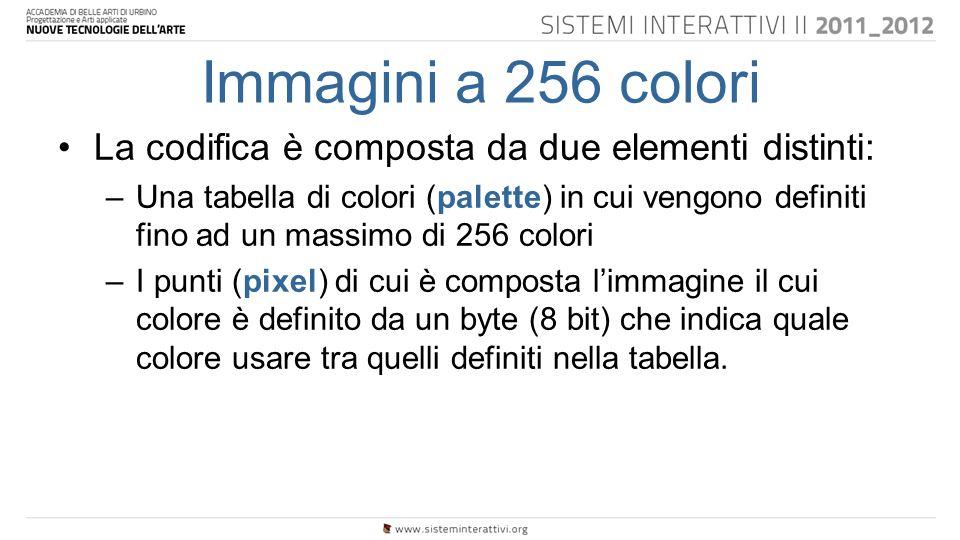Immagini a 256 colori La codifica è composta da due elementi distinti: –Una tabella di colori (palette) in cui vengono definiti fino ad un massimo di 256 colori –I punti (pixel) di cui è composta l'immagine il cui colore è definito da un byte (8 bit) che indica quale colore usare tra quelli definiti nella tabella.