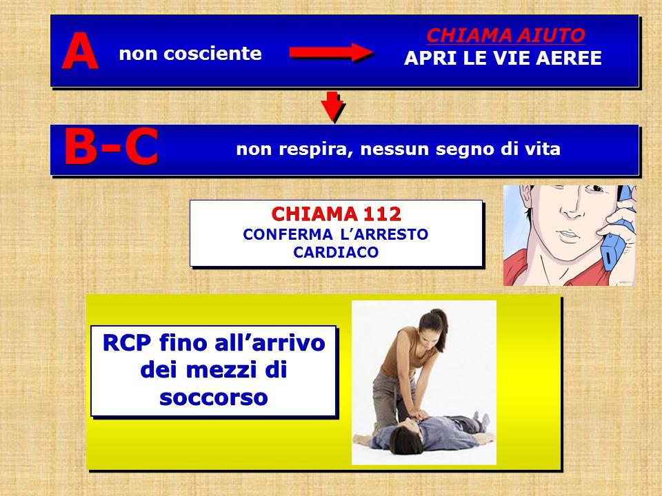 CHIAMA 112 CONFERMA L'ARRESTO CARDIACO CHIAMA 112 CONFERMA L'ARRESTO CARDIACO non respira, nessun segno di vitaB-C non cosciente CHIAMA AIUTO APRI LE