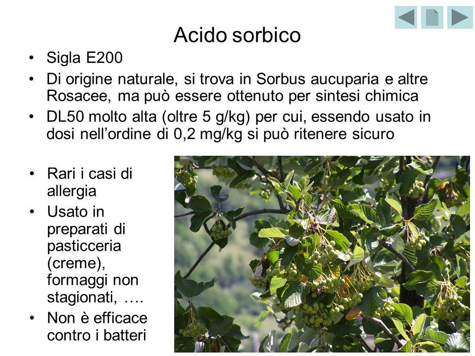 Acido sorbico Sigla E200 Di origine naturale, si trova in Sorbus aucuparia e altre Rosacee, ma può essere ottenuto per sintesi chimica DL50 molto alta