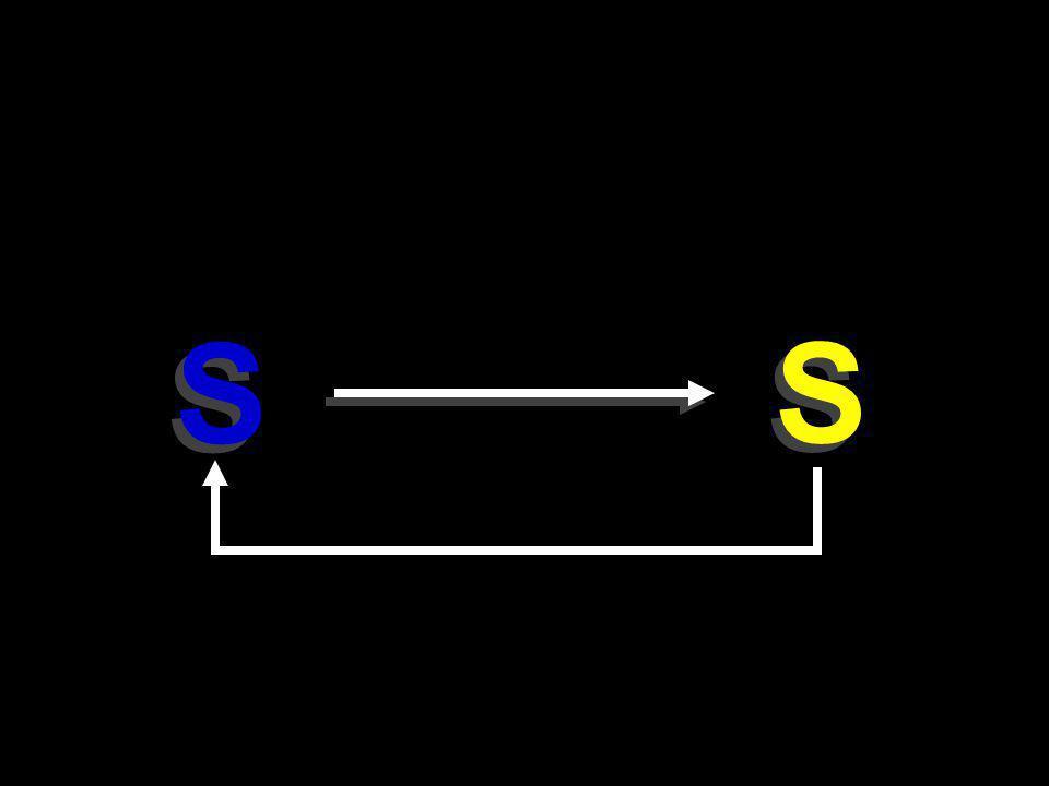 S S S S