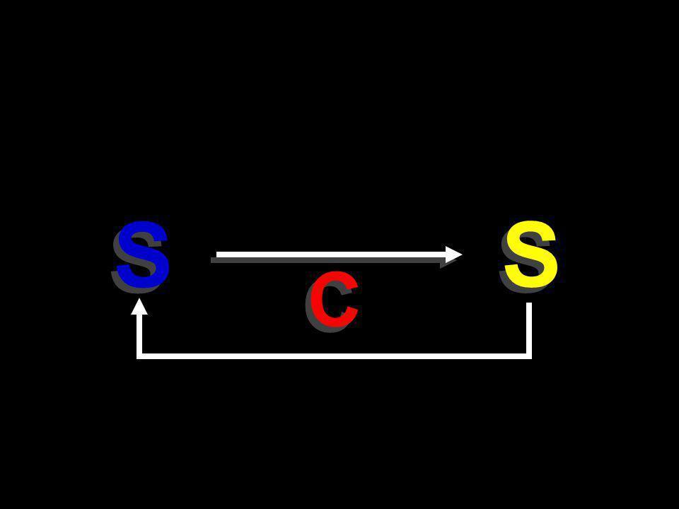 S S S S C C