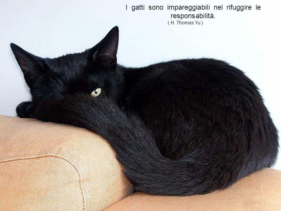 Se si potesse incrociare un uomo con un gatto, l essere umano ne risulterebbe migliorato, ma il gatto peggiorato.