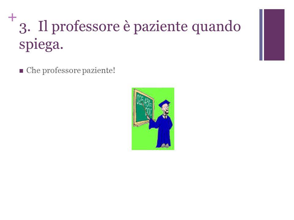 + 3. Il professore è paziente quando spiega. Che professore paziente!