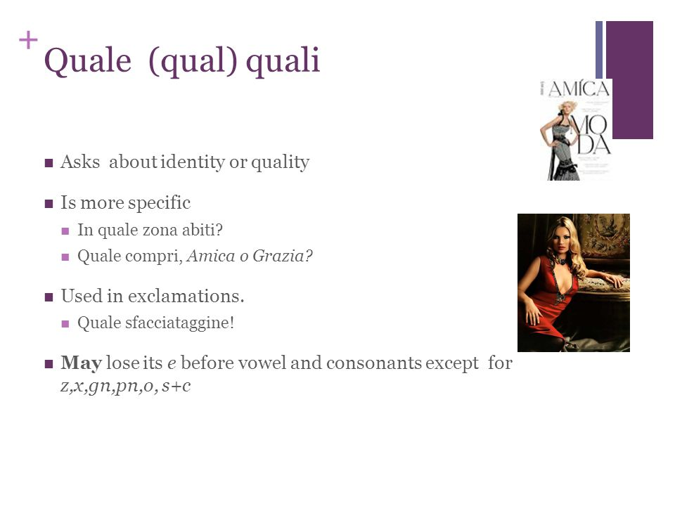 + Quale (qual) quali Asks about identity or quality Is more specific In quale zona abiti.