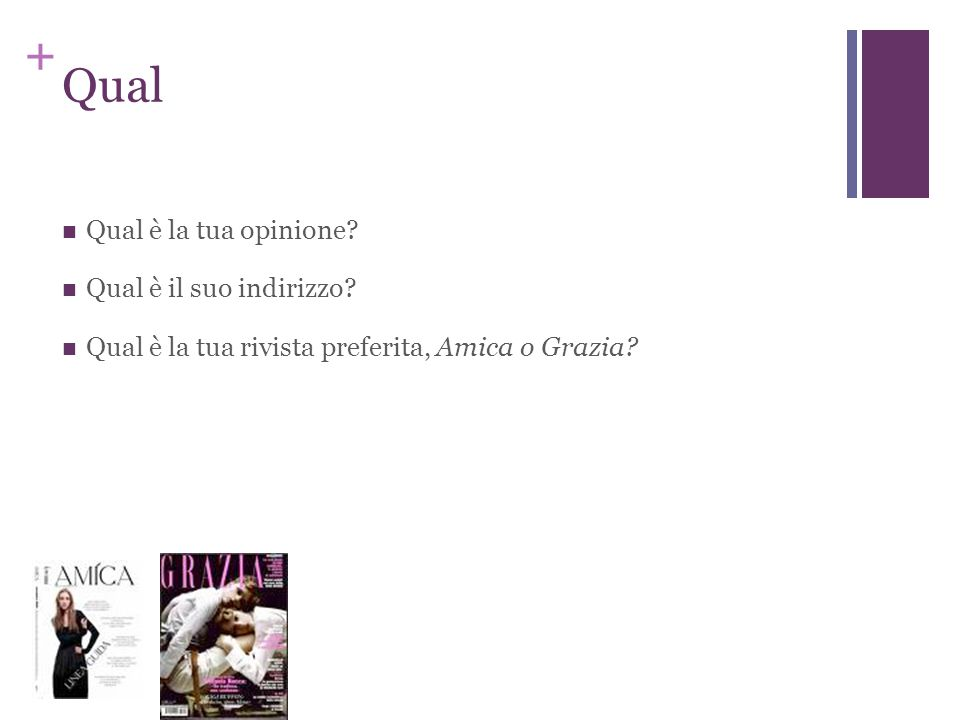 + Che o Quale Che = quale/qual/quali Che --informal, spoken Quale more specific used more formally used to avoid ambiguity