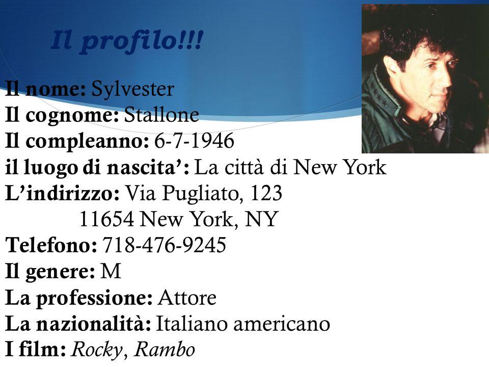 Il nome: Sylvester Il cognome: Stallone Il compleanno: 6-7-1946 il luogo di nascita': La città di New York L'indirizzo: Via Pugliato, 123 11654 New Yo