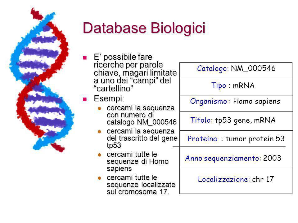 Database Biologici E' possibile fare ricerche per parole chiave, magari limitate a uno dei campi del cartellino E' possibile fare ricerche per parole chiave, magari limitate a uno dei campi del cartellino Esempi: Esempi: cercami la sequenza con numero di catalogo NM_000546 cercami la sequenza con numero di catalogo NM_000546 cercami la sequenza del trascritto del gene tp53 cercami la sequenza del trascritto del gene tp53 cercami tutte le sequenze di Homo sapiens cercami tutte le sequenze di Homo sapiens cercami tutte le sequenze localizzate sul cromosoma 17.