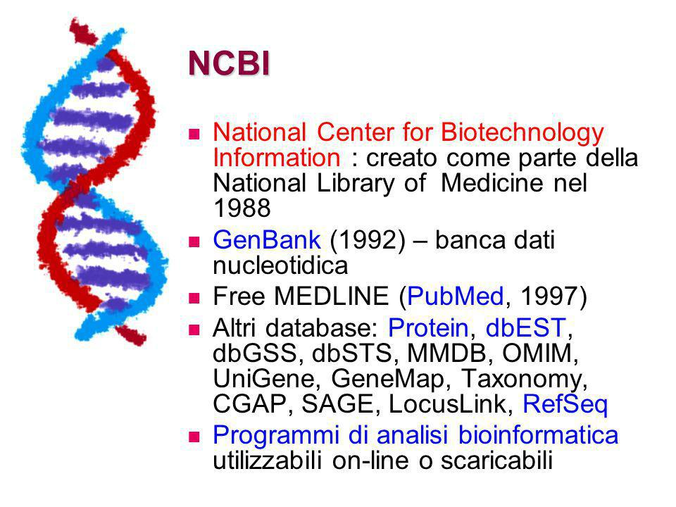 NCBI National Center for Biotechnology Information : creato come parte della National Library of Medicine nel 1988 GenBank (1992) – banca dati nucleot