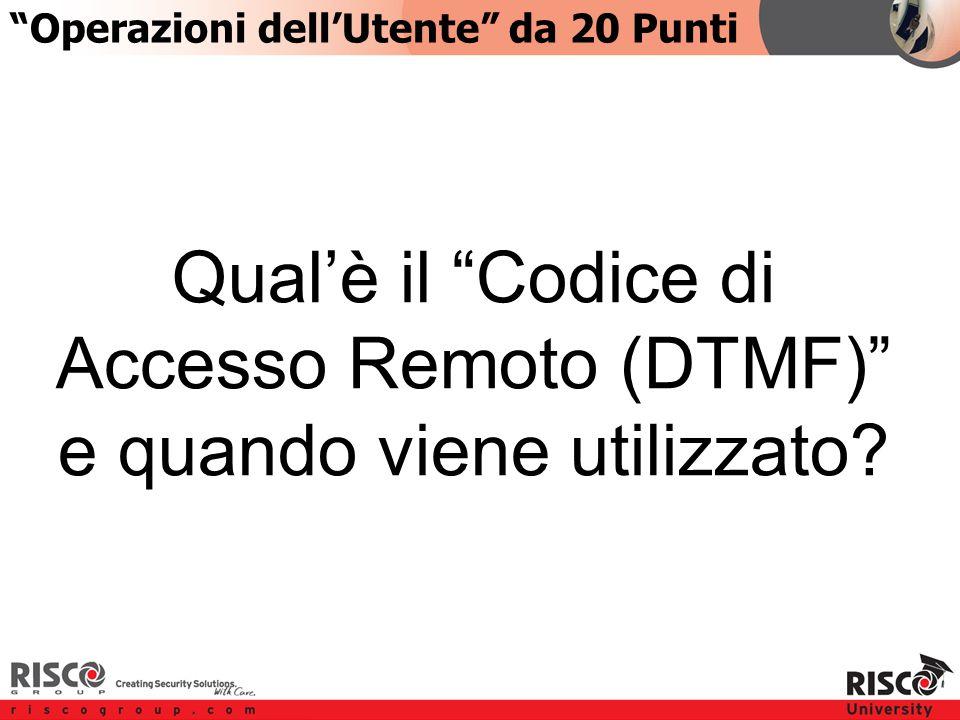 3:203:20 Qual'è il Codice di Accesso Remoto (DTMF) e quando viene utilizzato.