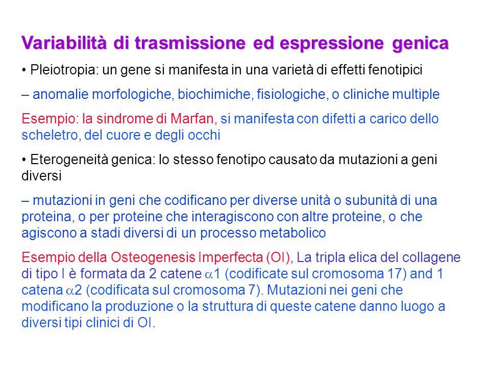 Variabilità di trasmissione ed espressione genica Pleiotropia: un gene si manifesta in una varietà di effetti fenotipici – anomalie morfologiche, bioc