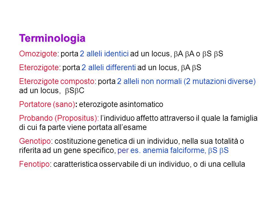 Terminologia Omozigote: porta 2 alleli identici ad un locus,  A  A o  S  S Eterozigote: porta 2 alleli differenti ad un locus,  A  S Eterozigote