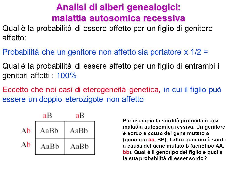 Analisi di alberi genealogici: malattia autosomica recessiva Qual è la probabilità di essere affetto per un figlio di genitore affetto: Probabilità ch