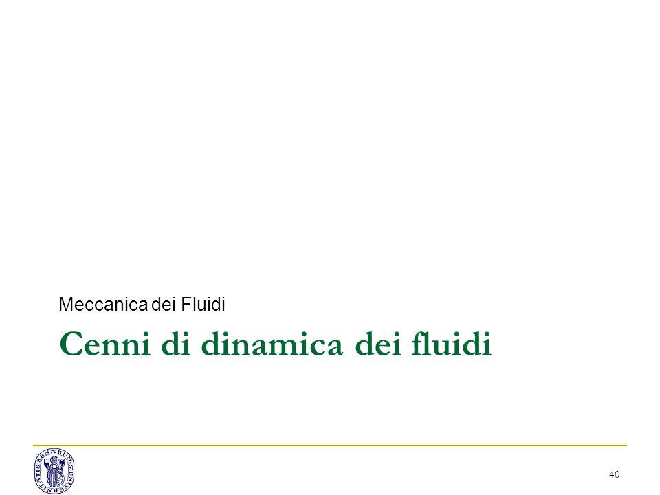 Cenni di dinamica dei fluidi Meccanica dei Fluidi 40