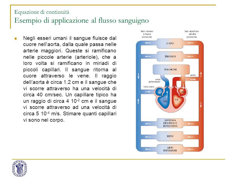 Equazione di continuità Esempio di applicazione al flusso sanguigno Negli esseri umani il sangue fluisce dal cuore nell'aorta, dalla quale passa nelle